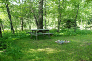 Bear-Den-Picnic-Table-Fire-Ring-Grill-Silver-Cliff-Campground